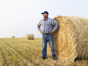 5-traits-of-a-good-farmer