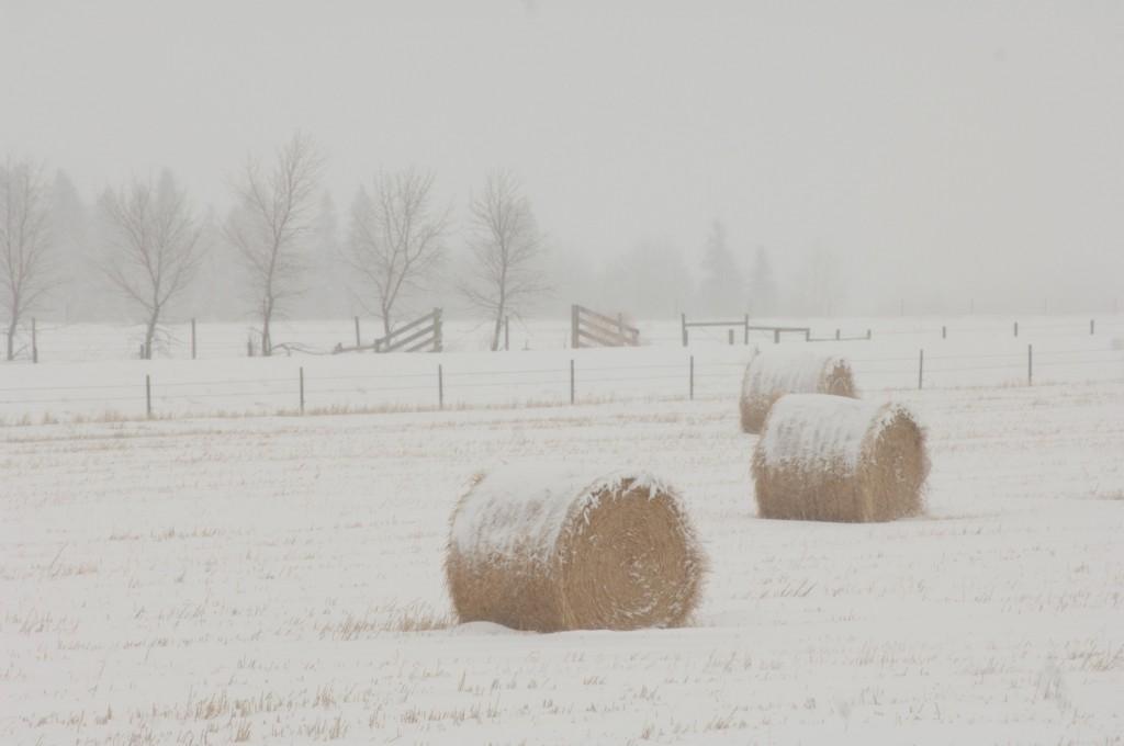 hull-o farms winter vacations